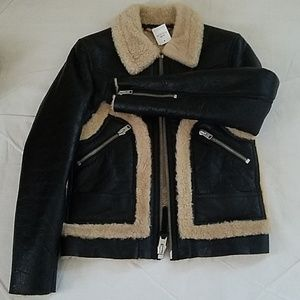 Coach shearing lamb men jacket